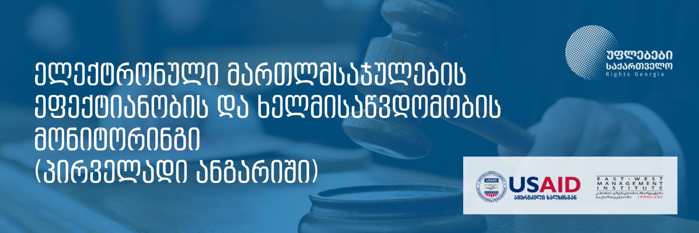 ელექტრონული მართლმსაჯულების ეფექტიანობის და ხელმისაწვდომობის მონიტორინგი - პირველადი ანგარიში